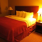 Foto di Quality Inn and Suites Davenport