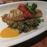 Red snapper served with quinoa