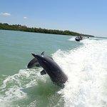 Photo de Capt. Ron's Awesome Everglades Adventures