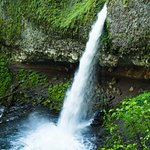 Ponytail Falls in the Spring