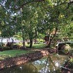 May 2017 - wonderful Coconut Lagoon Resort