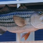 You know you found it when you see the GIANT fish on the building!