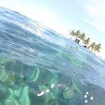 Foto de Splash Dive Shop