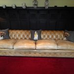 Couch in lounge area - love the Boxer pillows!
