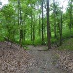 Photo de Gambrill State Park
