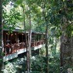 Photo of Silky Oaks Lodge
