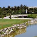 Taking walk around the golf course