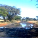 tarred road between camps on a good day