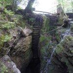 Photo of Canyon Rio Sass