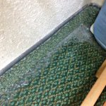 Filthy carpet with a thick layer of dust in all corners and around the perimeter of the room.