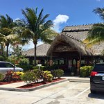 Great atmosphere and good food!  This is the Island Chicken and Fresh Catch of the Day, and the