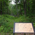 Foto de Manassas National Battlefield Park