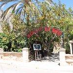 The front of Es Moli restaurant