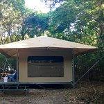 New eco-tent