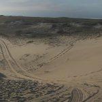Foto de Art's Dune Tours