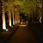 Pathways at night