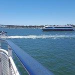 Hornblower Cruise Ships