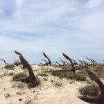 Praia do Barril Foto