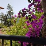 Photo of Larissa Akman Park