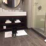 Kit Kat shows off the hip bathroom - dual sinks!