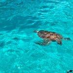 Foto di The Taaras Beach & Spa Resort