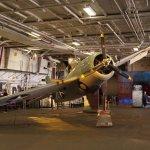 WW2 Grumman Wildcat suspended on display