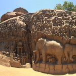 Amazing elephant carvings on the stones.