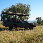 Out on a game drive at Rhino Rodge