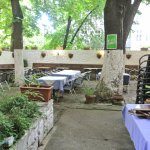 dehors ristorante Beograd a Vienna
