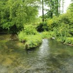 The clear fast flowing River
