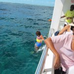 snorkeling off the boat.
