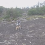 Me my daughter and the dogs out at Arabia Mountain