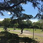 Photo of Kinuta Park