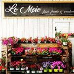 Agriturismo Le Moie Foto