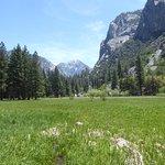 Zumwalt Meadow, Kings Canyon National Park