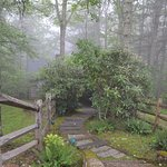 Photo de Glade Valley Bed and Breakfast