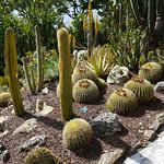 giardino esotico