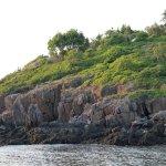 """Osprey Point"" overlooking ""Sunset Lagoon,"" Hermit Island Campground"