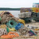 Traps and colorful lines at the shore, waiting for our boat ride to Seguin Island Lighthouse