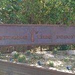 SmokeTree Resort & Bungalows Foto