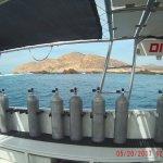 Foto de Dive Cabo
