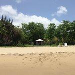 Photo de Montpelier Plantation & Beach