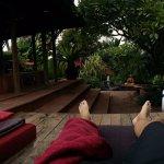 Oasis pool area!