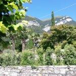 Chiosco Villa Carlotta Foto