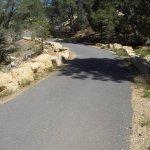 Photo of Rim Trail