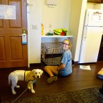 The kitchen/pet friendly area of our suite with great shelf for pet supplies