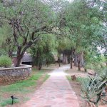 Walkway to tents and bungalows