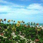 Foto de Cocoa Beach