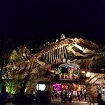 Photo de T-Rex