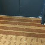 Foto de Sheraton Providence Airport Hotel